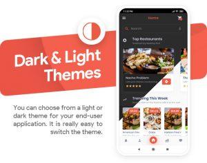 App feature: Dark & Light Themes